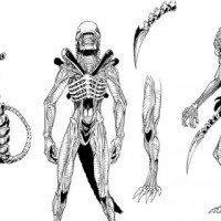 Vampirella Faces the Xenomoprhs in Aliens/Vampirella